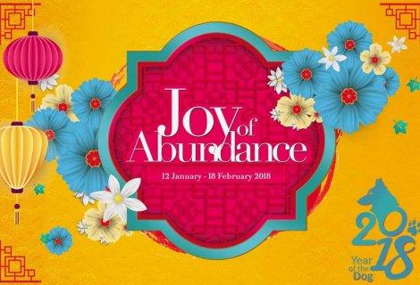 Joy of Abundance